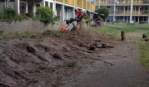Ruzie over kap van bossages bij Park Boswijk
