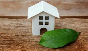 Gemeenteraad wil tiny houses mogelijk maken